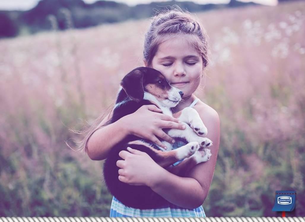 Dormir_Pets_Blog_Foto