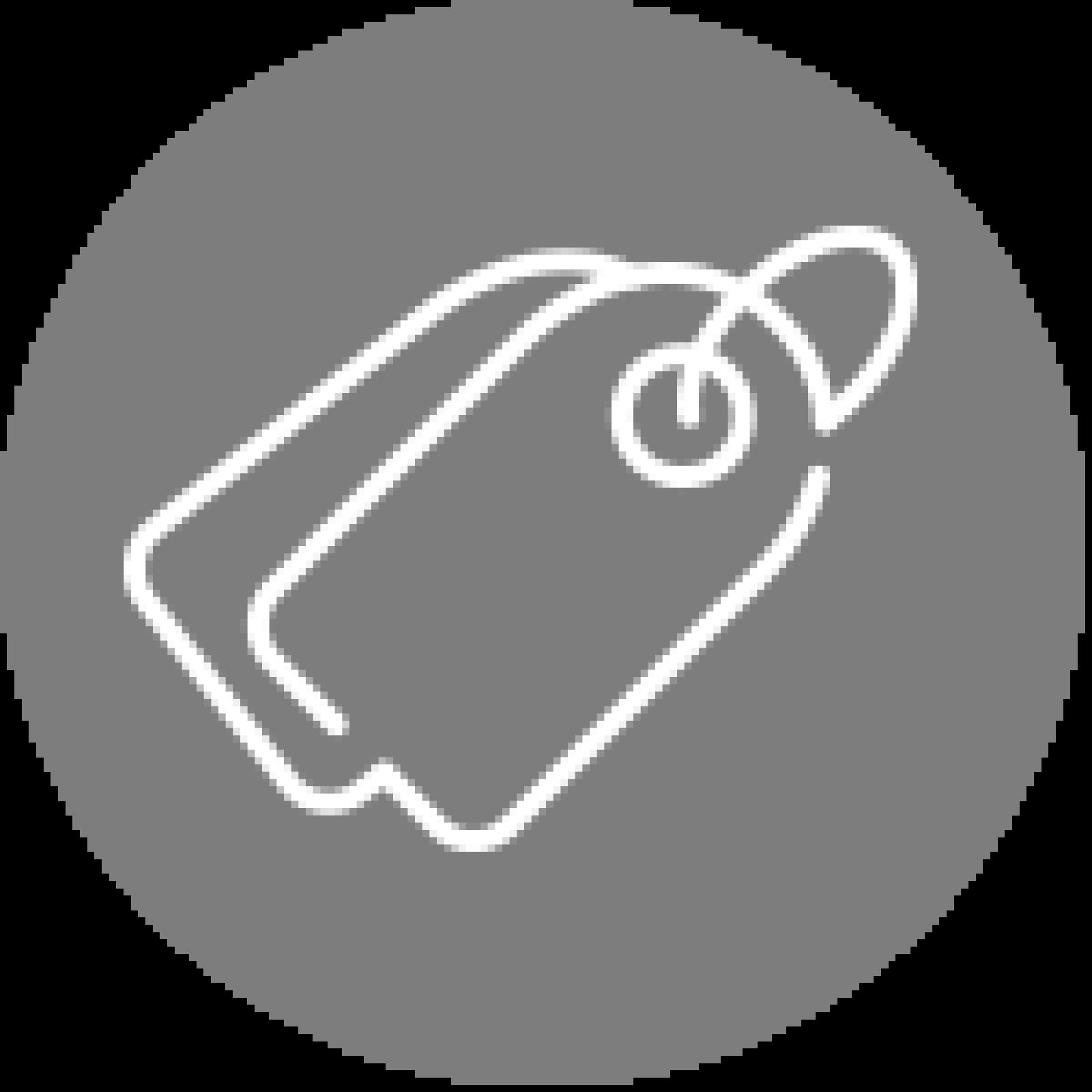 Icone simbolo loja